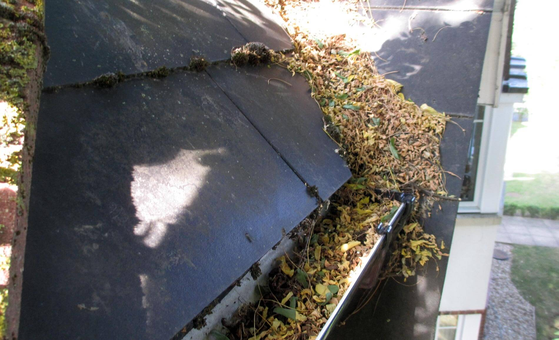 Gutter Clearing Services Farnham South East Uk Roofline Solutions