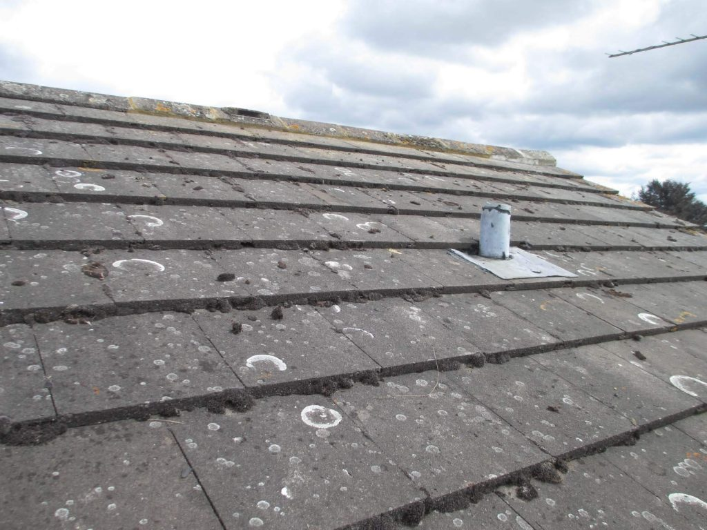 Are your roof tiles missing or damaged? Roofline Solutions ...